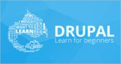 Multipurpose Drupal 8 Themes