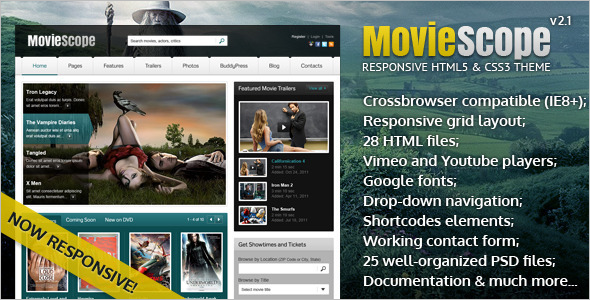 Responsive HTML5 and CSS3 Video Portal Template
