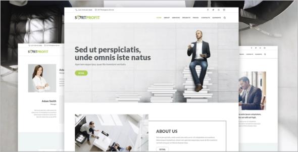 SortProfit Business WordPress Theme