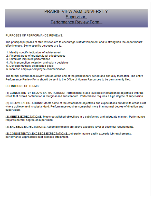 Supervisor Performance Evaluation Template