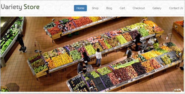 Variety Store WordPress Theme