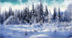 100+ Winter Background Templates