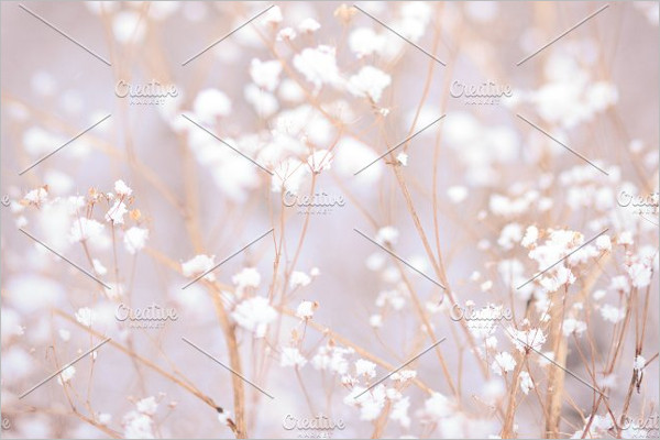 Winter Plant Background Template