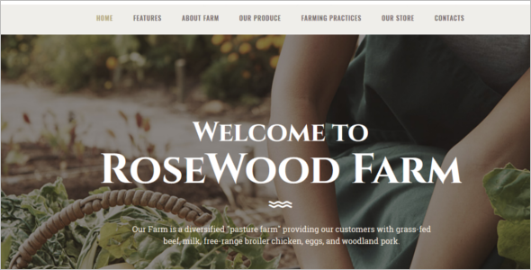Agriculture Template for Website