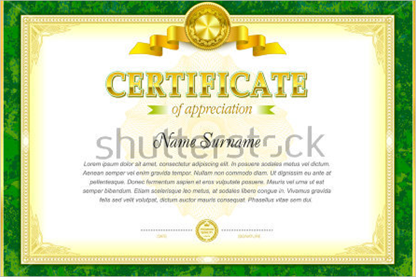 Driving Experience Certificate Word
