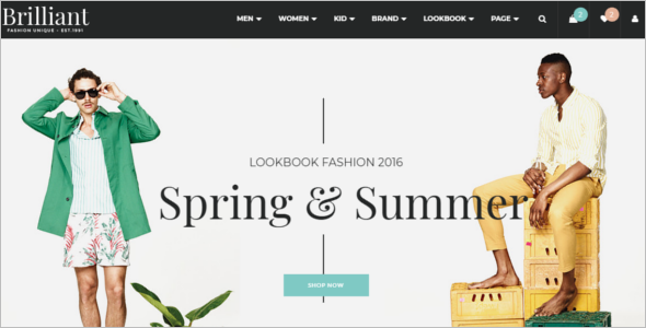 Elegant Ecommerce Website Template