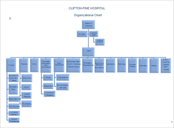 Hospital Organizational Chart Template