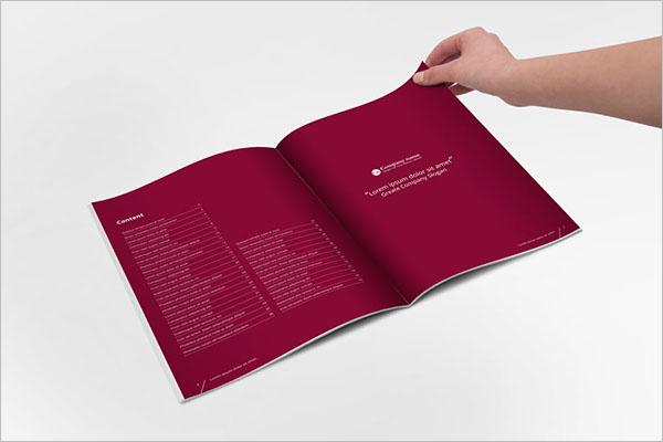 InDesign Brochure PDF