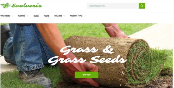 Modern Agriculture Website Template
