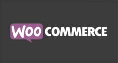 MultiPurpose WooCommerce Themes