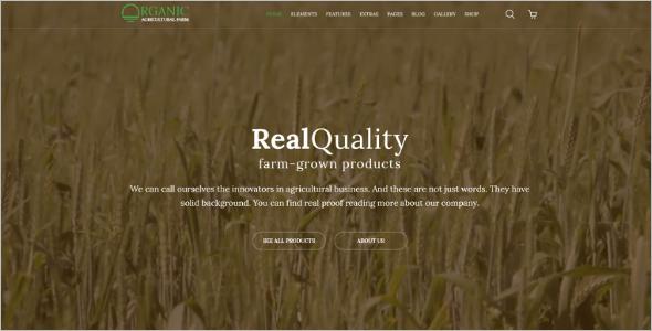 Multipurpose Organic Website Template