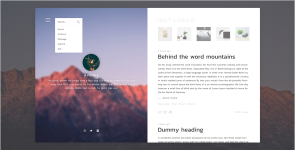 Popular Blog Website Template