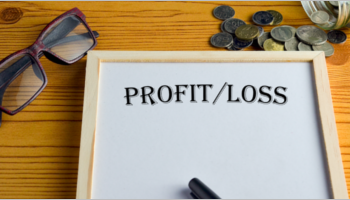 Profit & Loss Statement Templates
