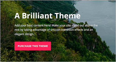 WordPress Website Templates