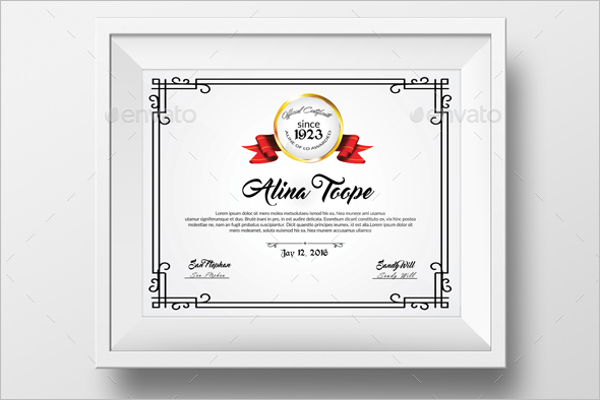 Academic Excellence Award Certificate