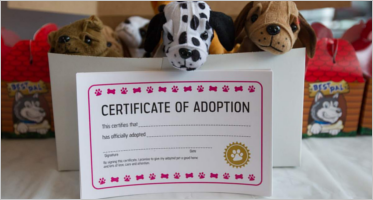 Adoption Certificate Templates