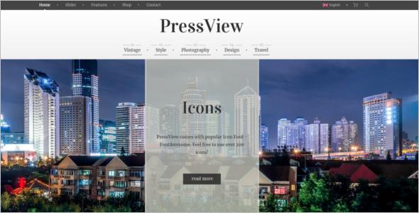 Antique WordPress Website Theme