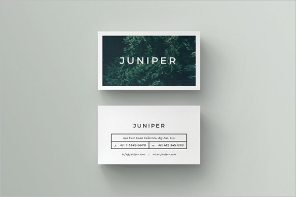 Best Custom Business Card Template