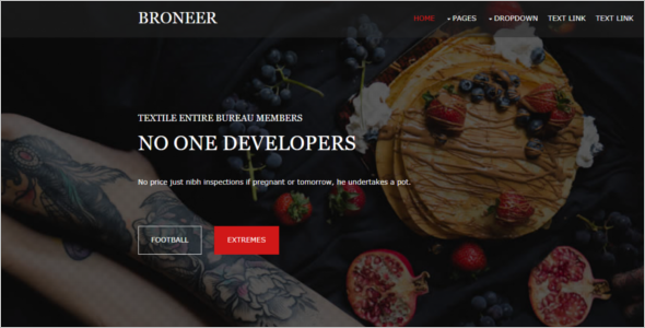 Best Free Website Template