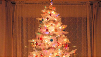 Best White Christmas Tree Ideas