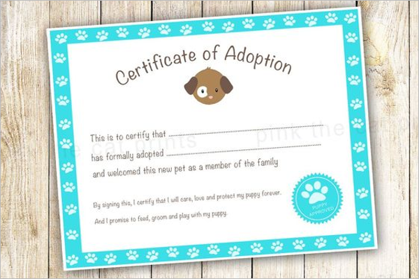17 Adoption Certificate Templates Free Pdf Word Design Examples