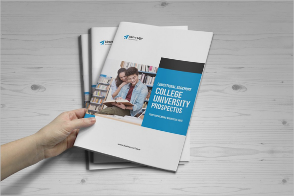 College Brochure Template Psd