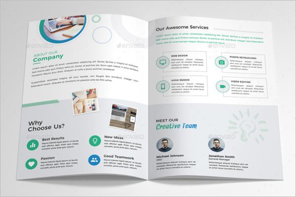 Company Brochure Content