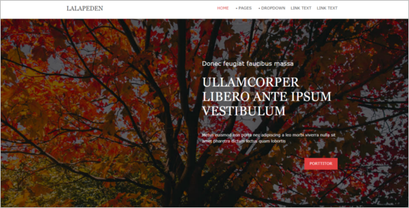 Customize Website Template