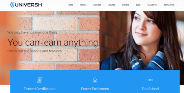 Drupal Website Themes