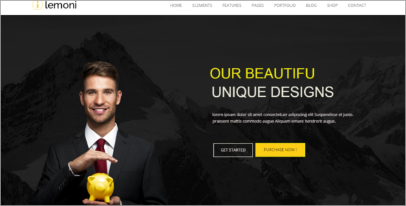 Drupal Professional Training Theme