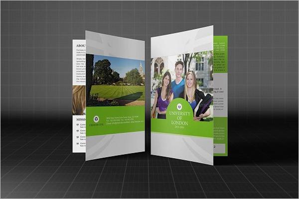 Elegant College Brochure Design