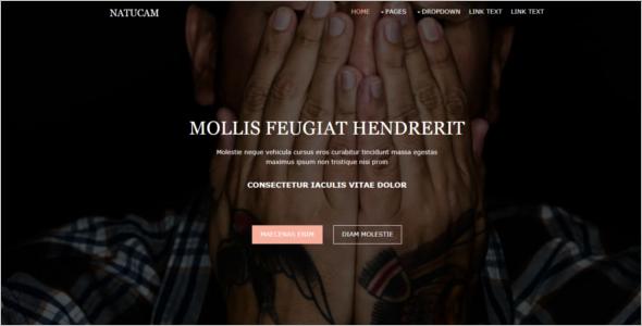 Elegant Free Website Template