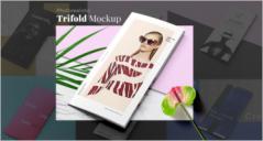Fashion Mockup PSD Templates