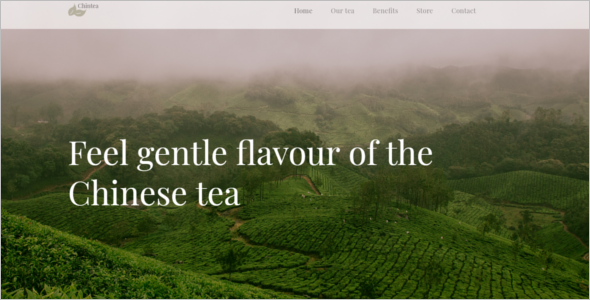 Food Products Website Template