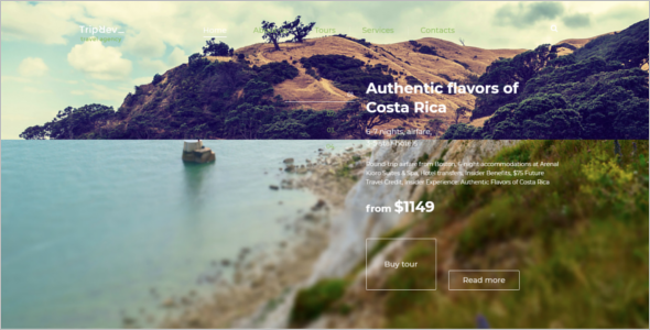 Free CSS Template For Travel Website