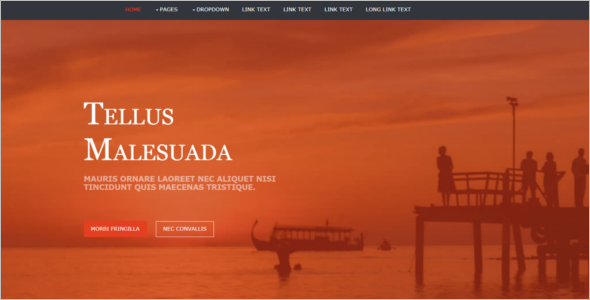 Free HTML for Website Template