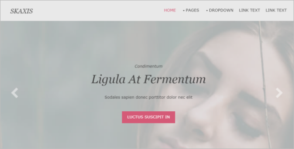 HTML5 & CCS3 Website Template