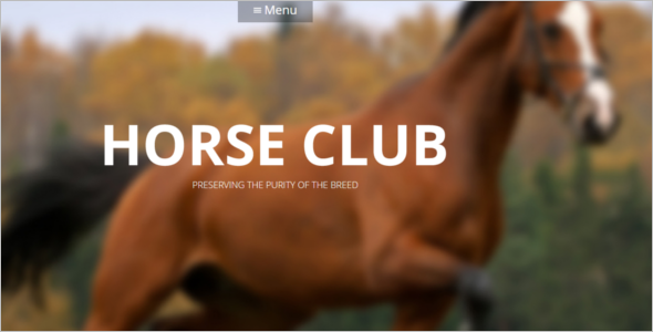 Horse Care WordPress Theme