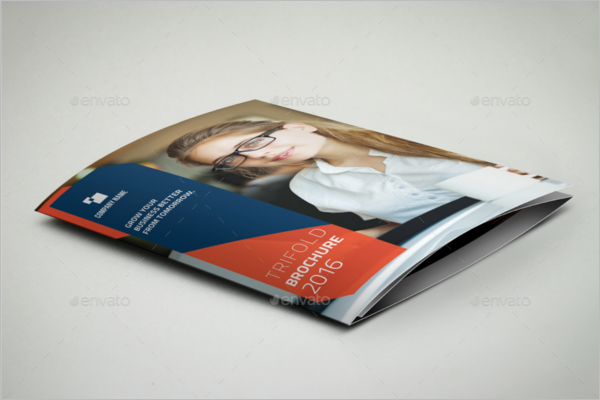 Large Brochure Holder Template