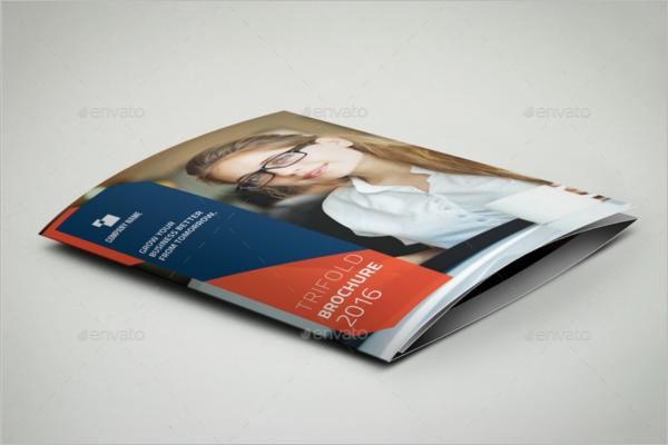 Large Brochure Holder Template
