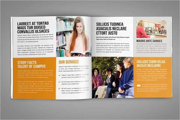 40 college brochure templates free psd pdf word sample for College brochure templates free download