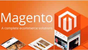Magento Website Templates