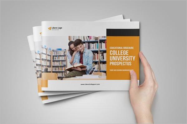 management University Brochure Design