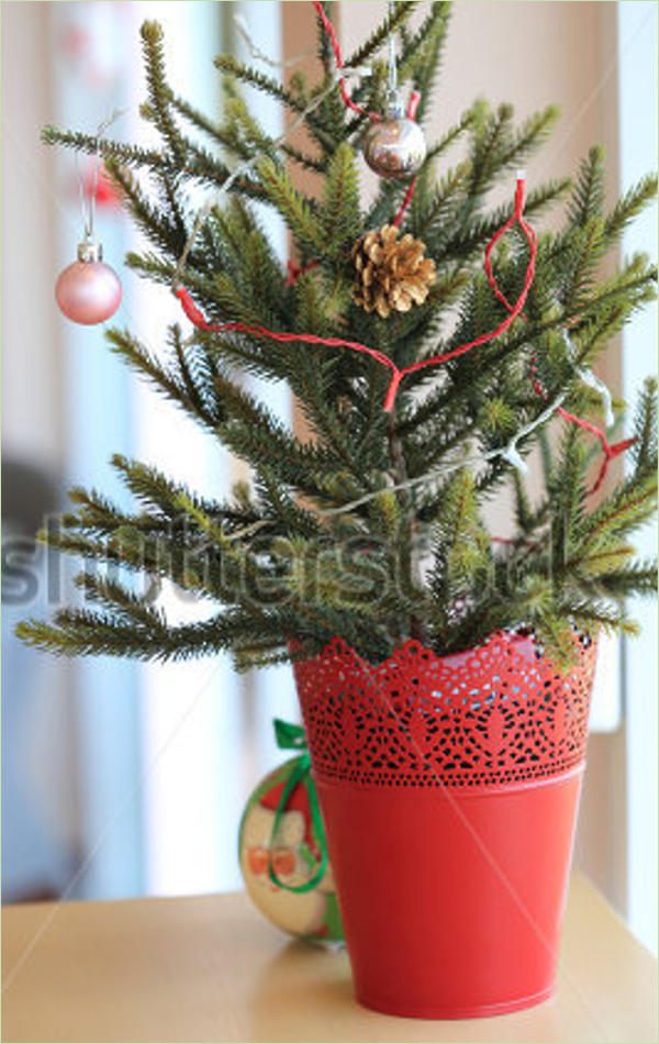 Miniature Christmas Tree Idea