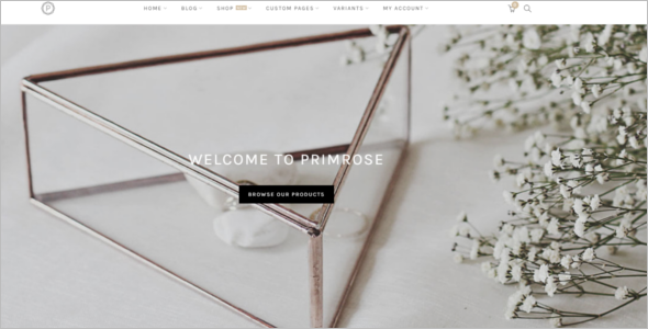 Minimal WordPress Website Theme