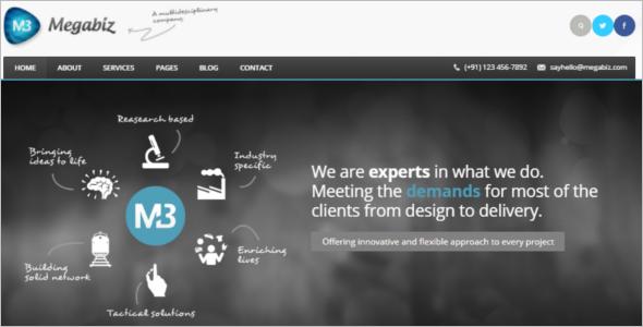 MultipurposeCSS Website Template