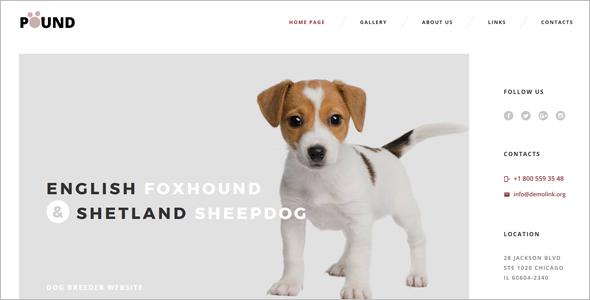 Pet'sCare Website Template