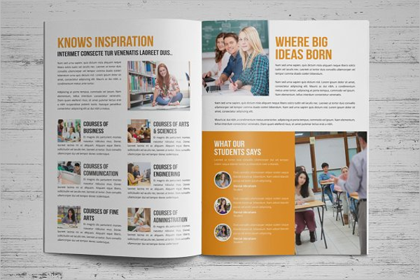 40 College Brochure Templates Free Psd Pdf Word Sample Designs