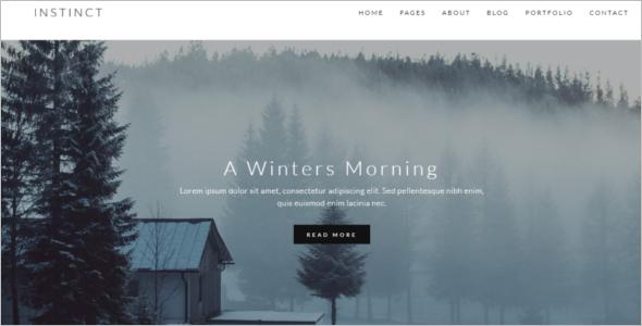 Portfolio & Blog Website Template