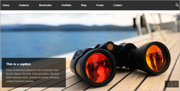 Premium Business Drupal Theme
